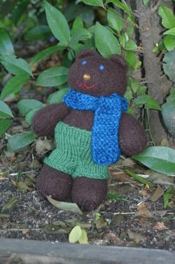 Bear01_1