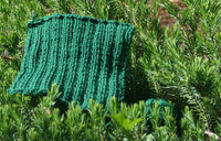 Dishcloth01_1