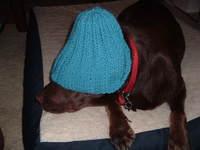 Knitting0001