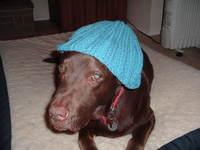 Knitting0002
